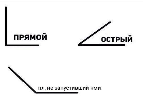 IMG_20210502_131749.jpg